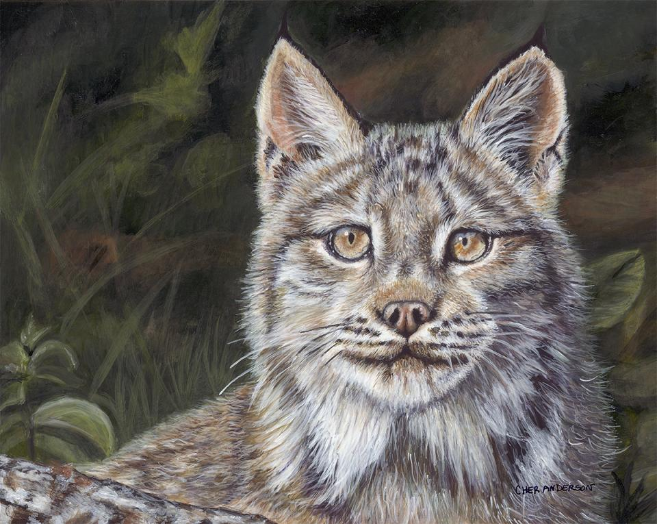 Edit Artwork | Wallhanging by Cher Anderson | Artists for Conservation