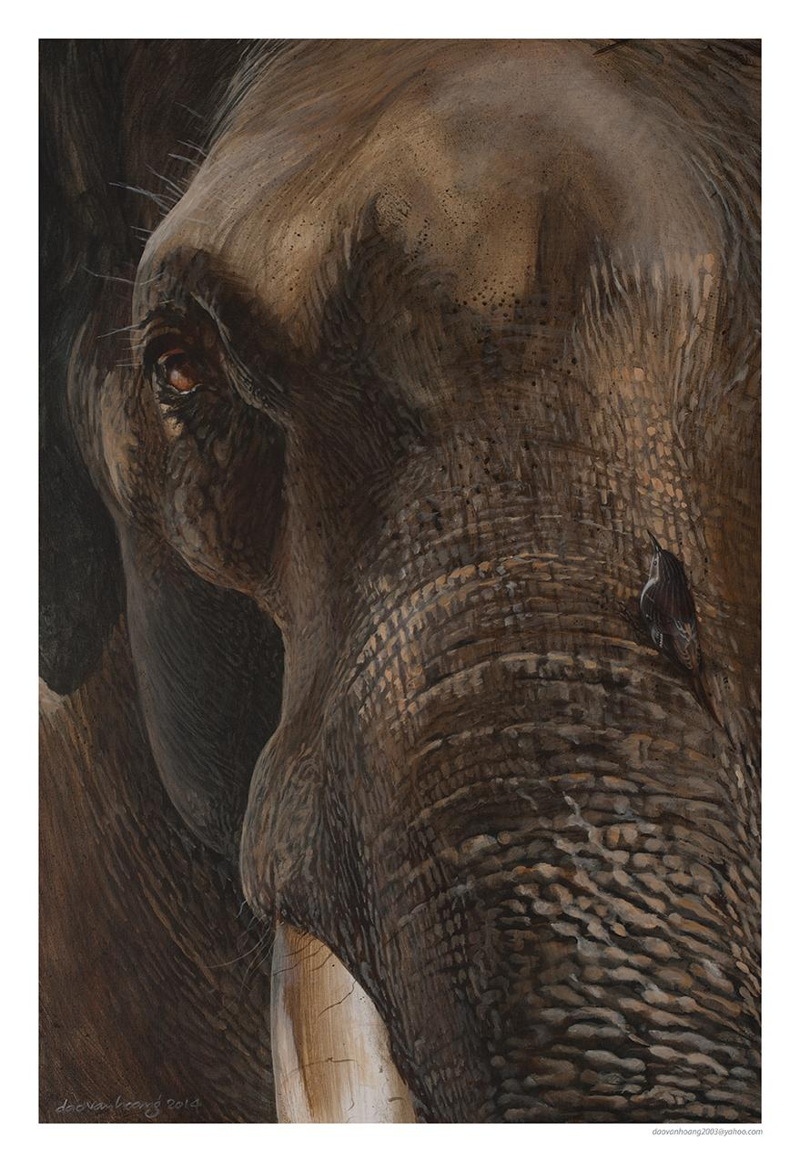 | Wallhanging by van Hoang Dao | Artists for Conservation