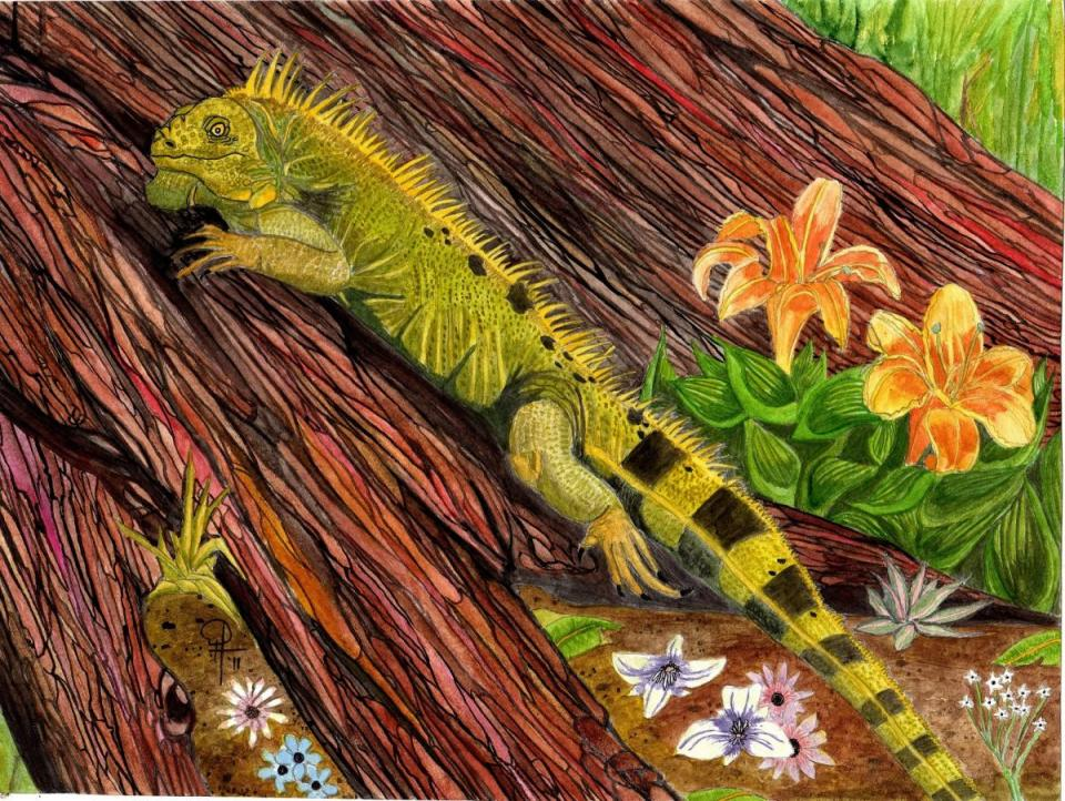 | Wallhanging by Doug Hiser | Artists for Conservation