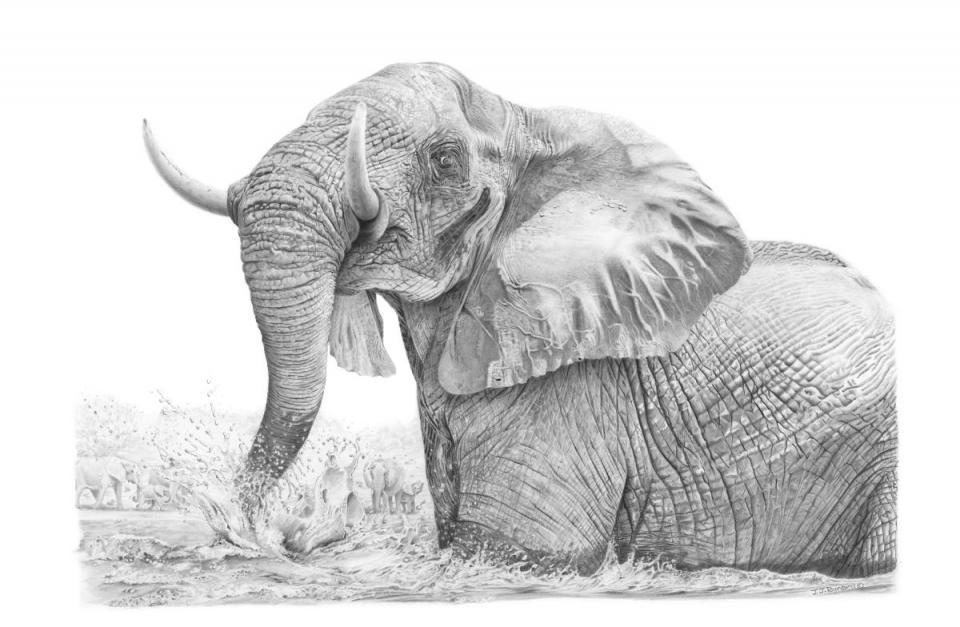 Add Artwork | Wallhanging by John Rainbird | Artists for Conservation