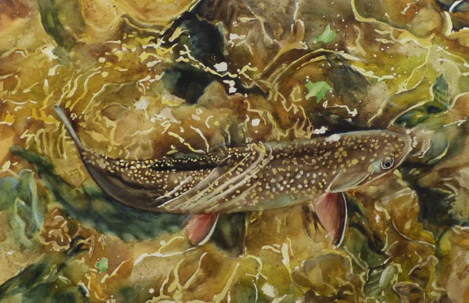 Add Artwork | Wallhanging by Susan Hildreth | Artists for Conservation