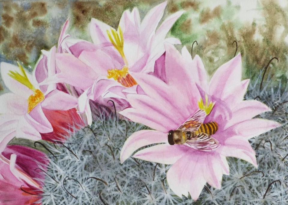 Edit Artwork | Wallhanging by Susan Hildreth | Artists for Conservation
