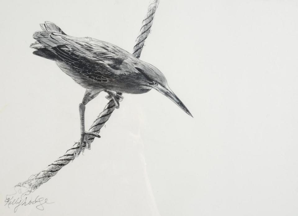 Edit Artwork | Wallhanging by Kelly Dodge | Artists for Conservation