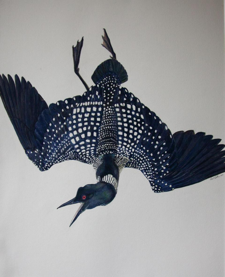 Edit Artwork | Wallhanging by Rob Butler | Artists for Conservation