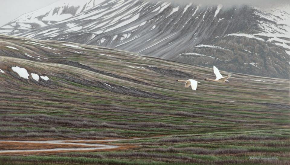 Edit Artwork | Wallhanging by Joseph Koensgen | Artists for Conservation