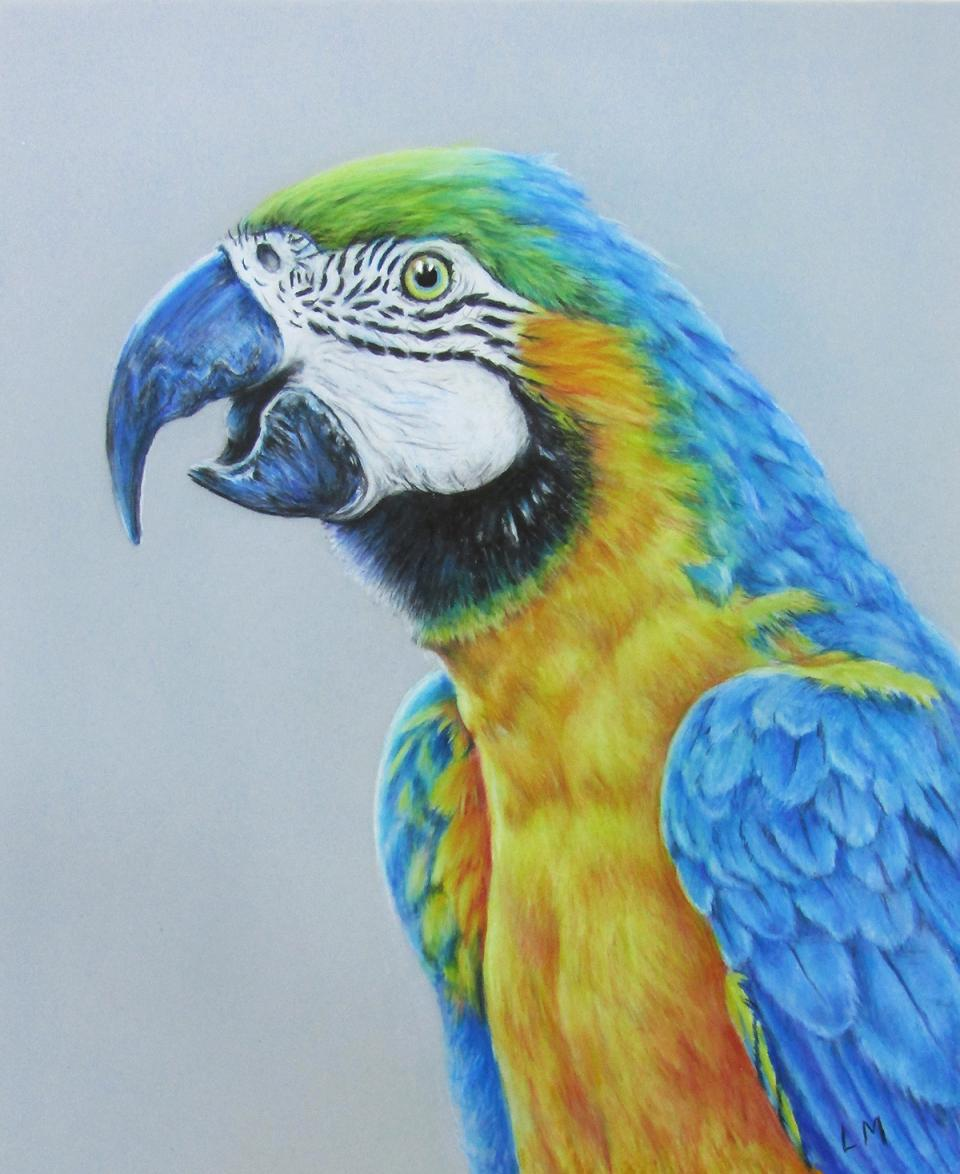 Edit Artwork   Wallhanging by Linda Martin   Artists for Conservation