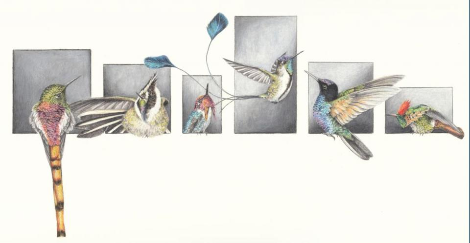 Edit Artwork   Wallhanging by Corinna Langebrake   Artists for Conservation