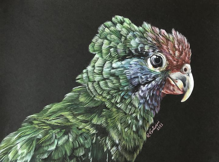 Add Artwork | Wallhanging by Rosana Venturini | Artists for Conservation