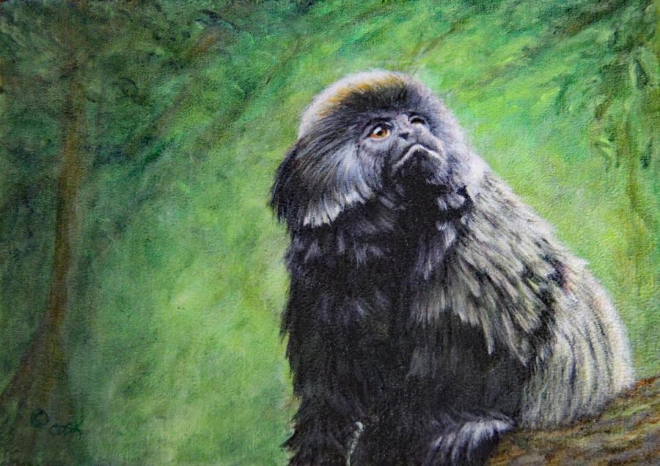 Add Artwork | Wallhanging by Cindy Sorley-Keichinger | Artists for Conservation