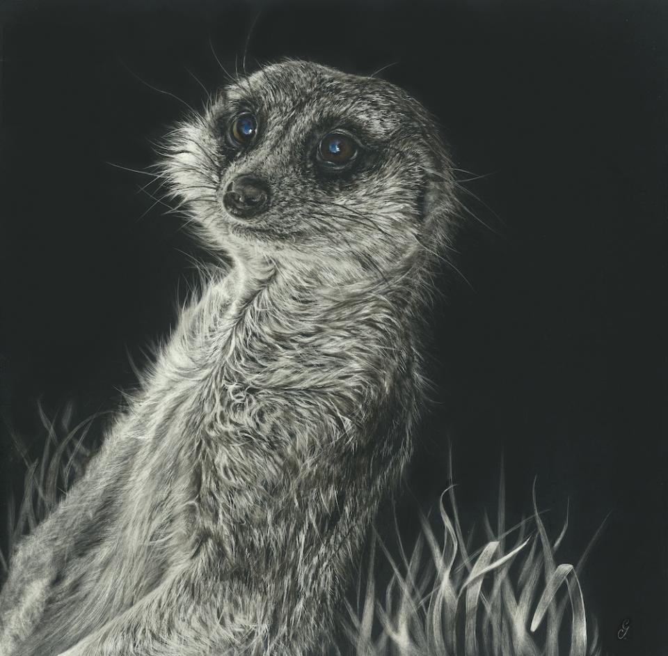 Edit Artwork | Wallhanging by Geraldine Simmons | Artists for Conservation