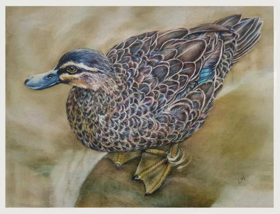 Edit Artwork | Wallhanging by Linda Martin | Artists for Conservation