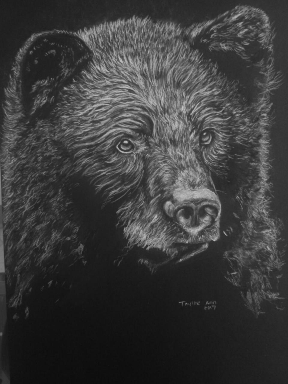 Edit Artwork | Wallhanging by Taylor Ann | Artists for Conservation