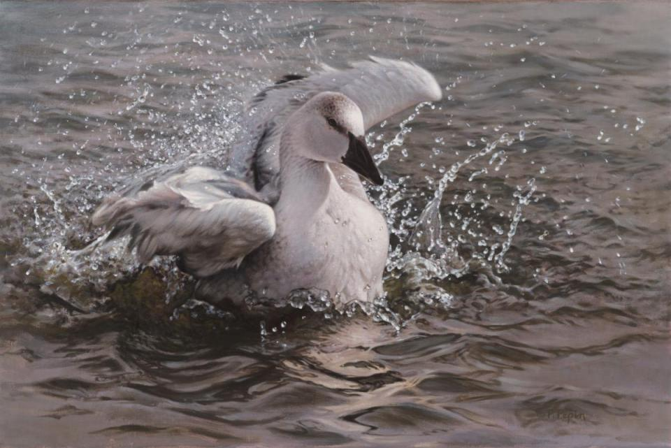 Add Artwork | Wallhanging by Patricia Pepin | Artists for Conservation