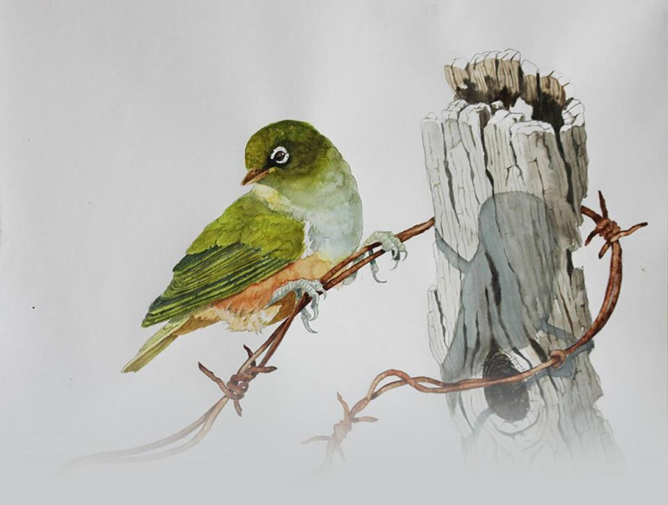 Edit Artwork | Wallhanging by Douglass Lockyer | Artists for Conservation