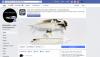Chris Maynard's Facebook site, Featherfolio