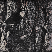 White-headed Woodpecker   Wallhanging by Andrea Rich   Artists for Conservation 2018