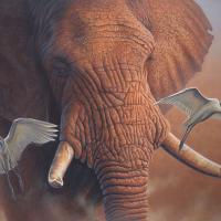 Nomad At Dusk   Wallhanging by Jerry Ragg   Artists for Conservation 2018