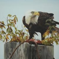 The Catch | Wallhanging by Tammy Taylor | Artists for Conservation 2018