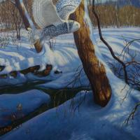 Snowy | Wallhanging by Mark Susinno | Artists for Conservation 2018
