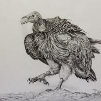 The Boss | Wallhanging by Ilse de Villiers | Artists for Conservation 2018