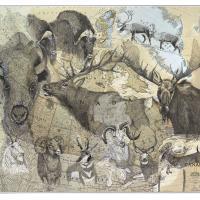 Horns & Antlers | Wallhanging by Stuart Arnett | Artists for Conservation 2018
