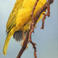 Saffron Cascade | Wallhanging by Jennifer Miller | Artists for Conservation 2018