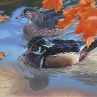 Autumn Stroll | Wallhanging by Derek Wicks | Artists for Conservation 2018