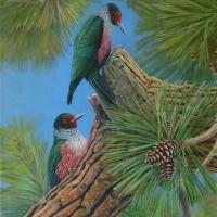 Lewis Woodpeckers, Burnt River | Wallhanging by Jon Janosik | Artists for Conservation 2018