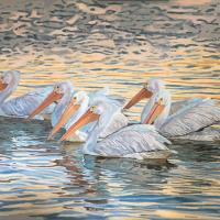 Sunrise Fishing - Sanibel | Wallhanging by Mary Louise O'Sullivan | Artists for Conservation 2018