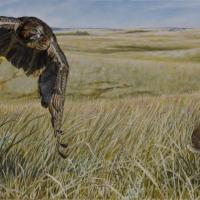 Great Plains Pursuit | Wallhanging by Rob Dreyer | Artists for Conservation 2018