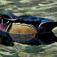 Wood Duck | Wallhanging by Rick Wheeler | Artists for Conservation 2018