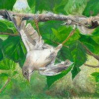 A Toehold on Life | Wallhanging by Lynn Waltke | Artists for Conservation 2018