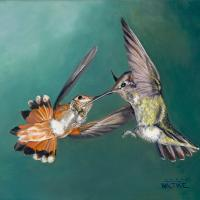 Sugarwater Duel at Ramsey Canyon | Wallhanging by Lynn Waltke | Artists for Conservation 2018