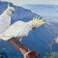 Time to Fly | Wallhanging by Garry Fleming | Artists for Conservation 2018