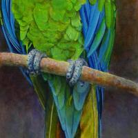 Great Green Macaw | Wallhanging by Kim Middleton | Artists for Conservation 2018