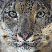 Hear My Voice | Wallhanging by Lisa Ann Watkins | Artists for Conservation 2018