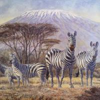 African Stripes | Wallhanging by Peter Blackwell | Artists for Conservation 2020