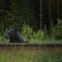 I Hear The Train A Comin' | Wallhanging by Tammy Taylor | Artists for Conservation 2020