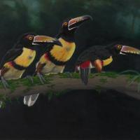 Three Aracari | Wallhanging by Eva Van Rijn | Artists for Conservation 2020