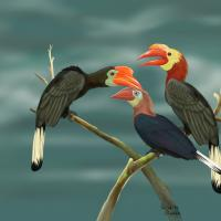 Walden' Hornbill Family   Wallhanging by Pat Latas   Artists for Conservation 2020