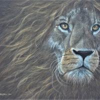 Relentless Fighter | Wallhanging by Cindy Weitzel | Artists for Conservation 2020