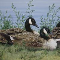Wild Ones at Rest | Wallhanging by Valerie Rogers | Artists for Conservation 2020