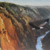 Yellowstone Canyon/American Eagle | Wallhanging by Guy Coheleach | Artists for Conservation 2020