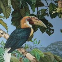 Blyth's Hornbill | Wallhanging by Ji Qiu | Artists for Conservation 2020