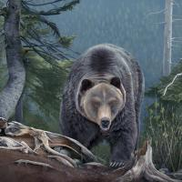 A Grizzly Encounter   Wallhanging by Laura Levitsky   Artists for Conservation 2020