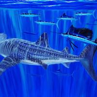 Giants and Sails | Wallhanging by Guy Harvey | Artists for Conservation 2020