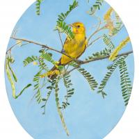 Portrait of a Lady               | Wallhanging by Lynn Waltke | Artists for Conservation 2020