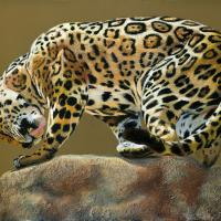 Jaguar with a Twist   Wallhanging by Patsy Lindamood   Artists for Conservation 2020