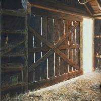 Barn's Early Light   Wallhanging by Suzie Seerey-Lester   Artists for Conservation 2021