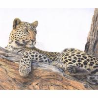 The Lookout   Wallhanging by Charlotte Williams   Artists for Conservation 2021